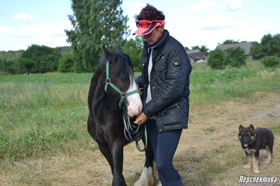 Бизнес на лошадях в Беларуси