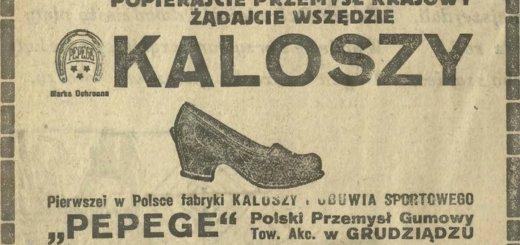 Чем прославился лидский бизнесмен Мелуп и как он завоевал рынок межвоенной Польши.