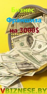 Бизнес-Франшиза VBIZNESE.BY. Прибыль от 3000 долларов в месяц!
