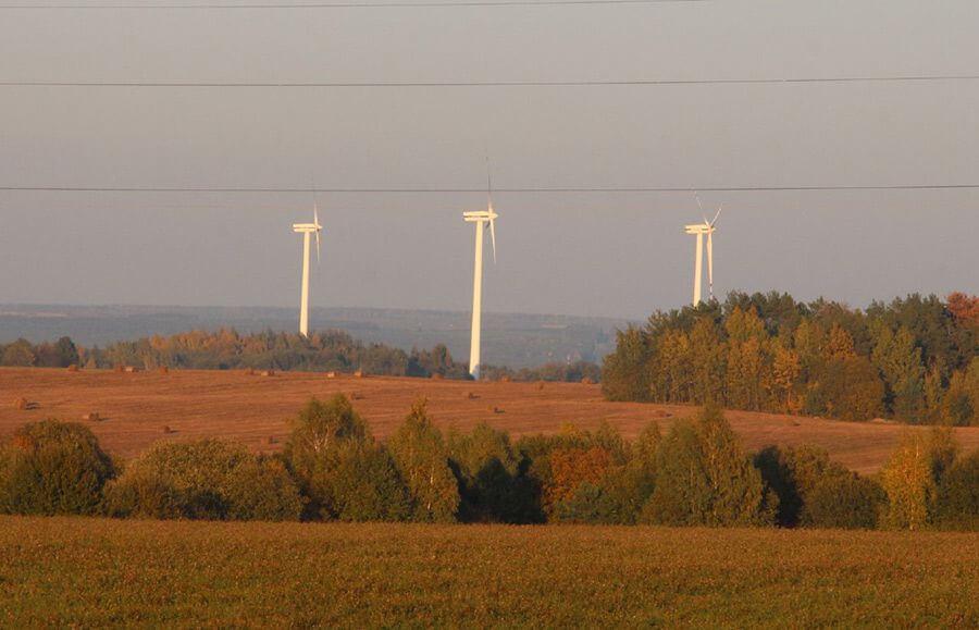 Ветропарк в Зелвенском районе стоимостью 5 млн. долларов.