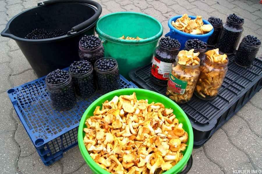 Сколько можно заработать на ягодах и грибах в Слуцке и не только