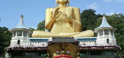 Шри-Ланка открыла границы для туристов со всего мира – теперь можно летать на отдых