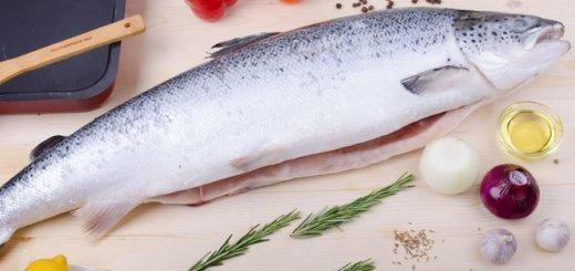 «Виталюр» строит новый завод по переработке рыбы