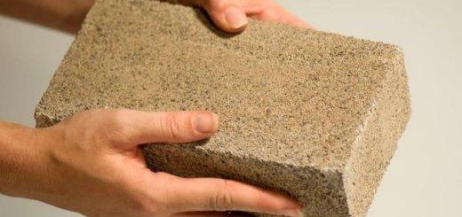 Как гриб стал кирпичом: почему мицелий — будущее строительного бизнеса